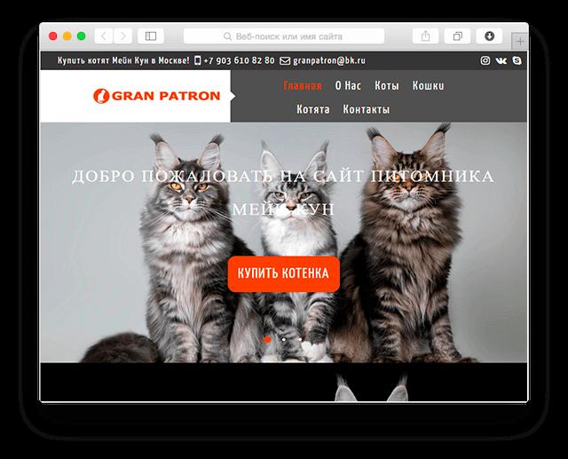 Разработка сайта питомника кошек породы мейнкун